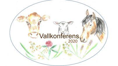 Vallkonferens