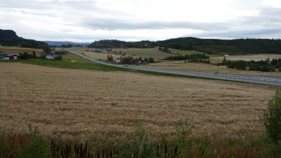 Kornsesongen 2020 i Trondelag B