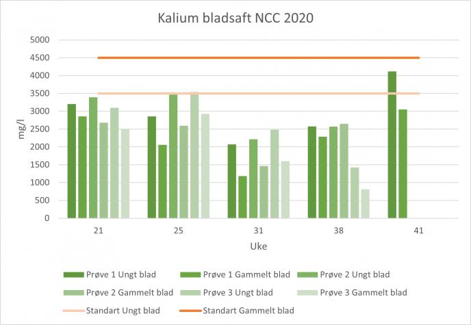 Kalium bladsaft NCC 2020